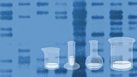 Create a DNA Fingerprint interactive lab - from PBS