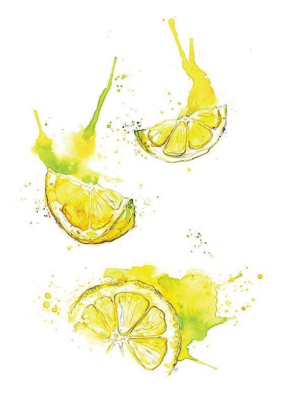 Giclee fine art print: lemon slices watercolor painting | AmyHolliday  – Acrylgemälde