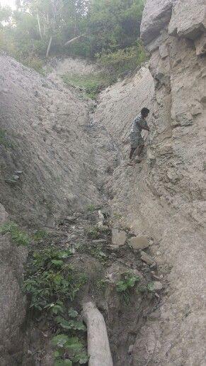 Climbing the cliffs at Scarborough bluffs