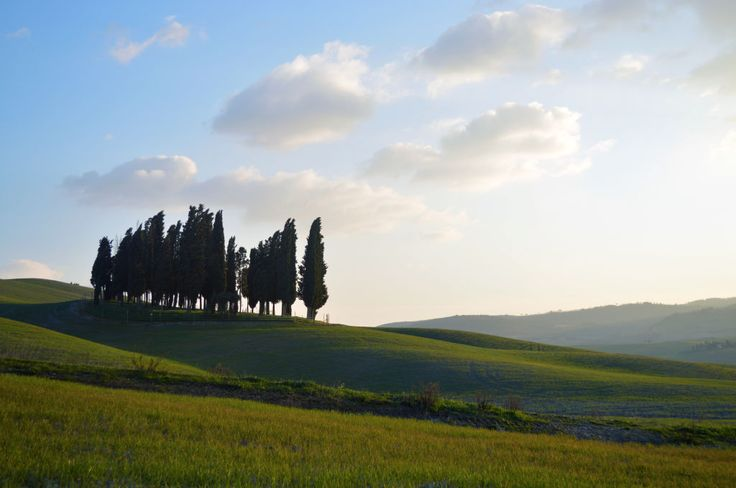 If you have 2 or 3 days and you wish to elevate your soul up to a state of peace of mind, then the tour of Crete Senesi, Val D'Orcia and Val di Chiana is what you need! You'll be simply amazed by the colours, smell and sounds of nature in this spot of land, which matches nature, culture and...