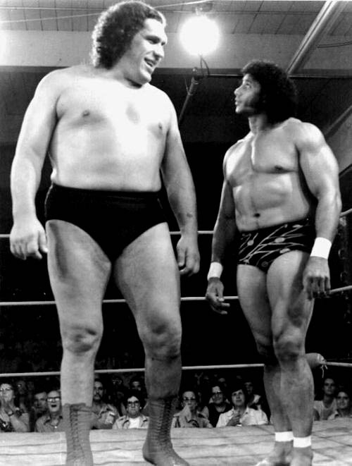 """When Wrestling was fun...""""André Roussimoff (1946-1993),best known asAndré the Giant, was aFrenchprofessional wrestlerandactor. His best remembered acting role was that of Fezzik, the giant in the filmThe Princess Bride.In 1993, he was the first inductee into theWWF Hall of Fame.""""    - Wikipedia"""