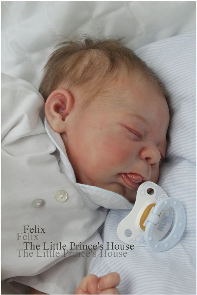 REBORN Lionel by Elisa Marx NOW Baby FELIX Boy Doll *The Little Prince's House*