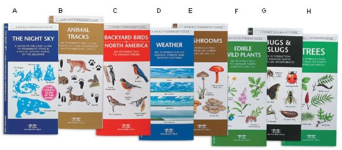"""Pocket Nature Guides  -- Folding guides on laminated card stock, 8x4"""" for carrying on walks. Guides include: constellations, animal tracks, backyard birds, weather & clouds, mushrooms, edible plants, bugs, trees. Available separately or as a set of eight. Nice gift for kids or adults."""