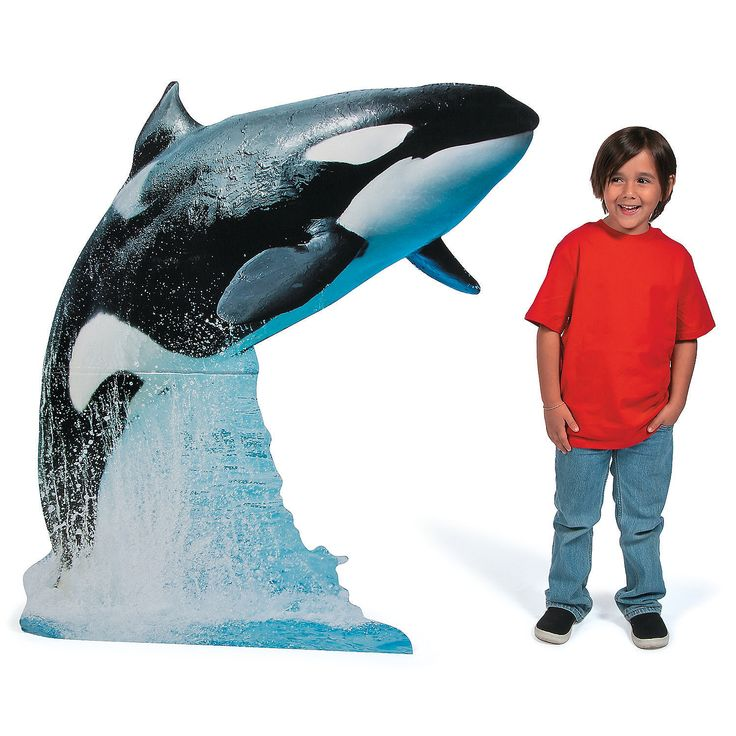 how to make a killer whale out of paper mache