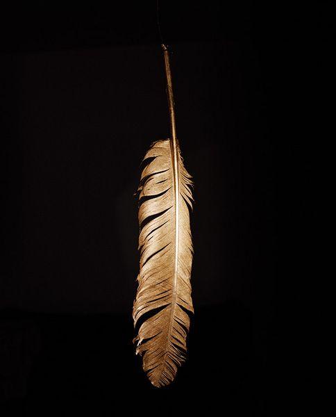 jaap Scheeren / The golden feather, 2008