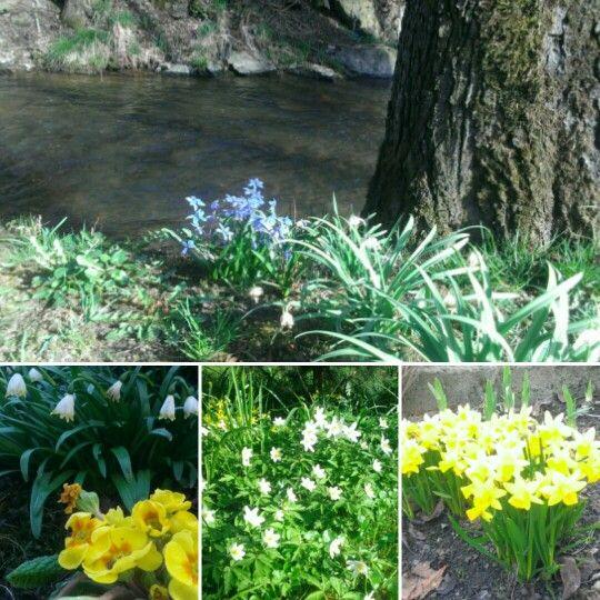 #SpringTime