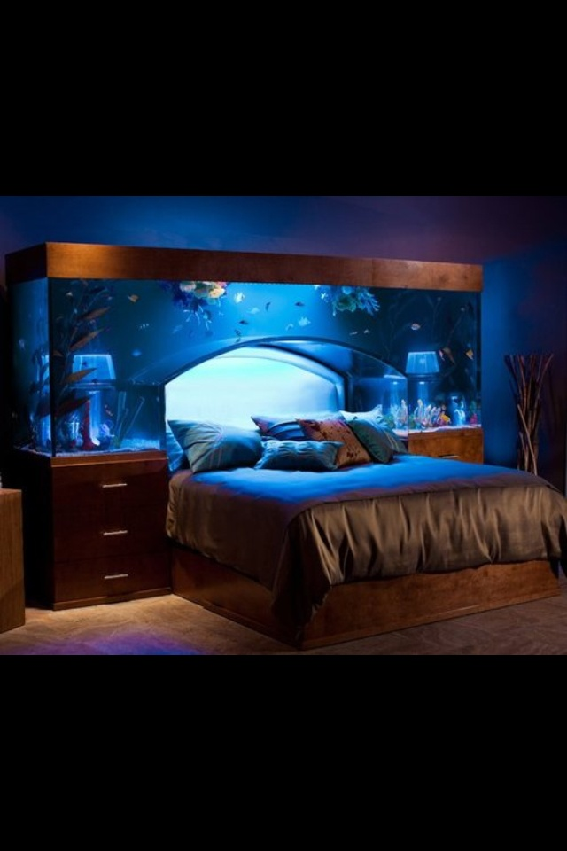 Fish tank bed home is where the heart is pinterest for Fish tank full movie