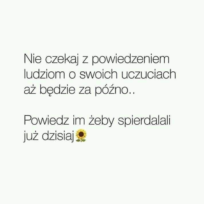 Pin By Sylwia P On Bad Me Mocne Cytaty Smieszne Teksty Zarty Smieszne Cytaty