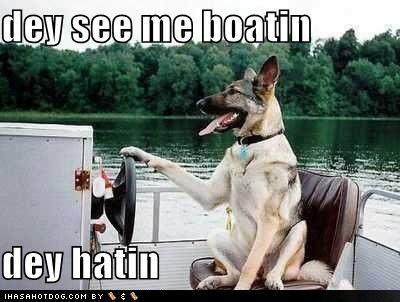 funny german shepherd pictures | funny-dog-pictures-they-see-me-boating.jpg