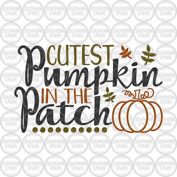 Cutest Pumpkin In The Patch Halloween Fall Thanksgiving Svg Png