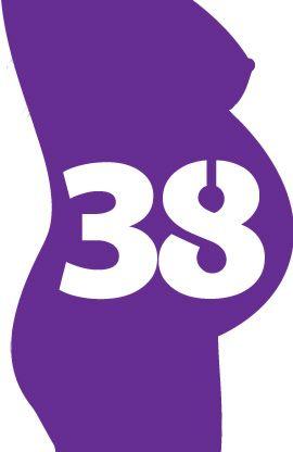 38.SSW - Die Wochen deiner Schwangerschaft