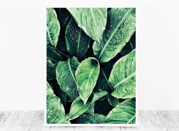 Green Leaf Print Leaves Printable Nature Print by CristylClear