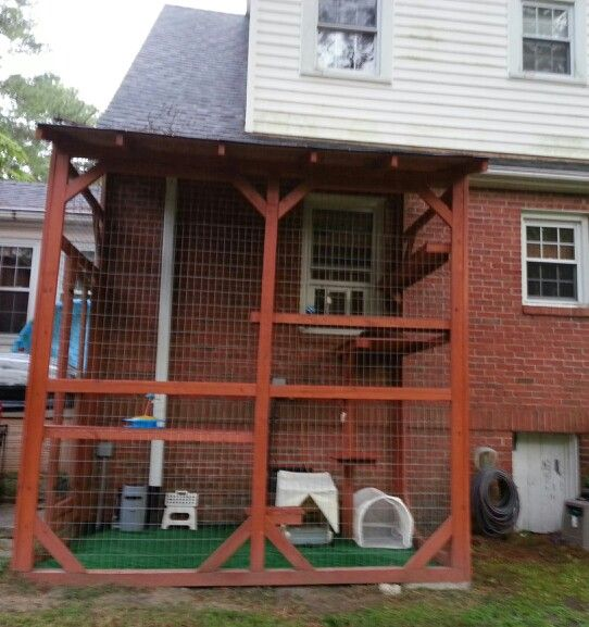 "The ""catio"" I designed....it's about 8' x 10' x12'. I stained all the wood myself so it would match the house and didnt look like a chicken coop. The cats exit through pet stairs on the inside then a expandable pet window door I bought on eBay.  Inside are shelves for basking in the sun and to get down to other levels and toys plus the best part...their automatic littermaids w covers in case it rains sideways. This cat enclosure also has a shingled roof! I added astroturf to the bottom…"
