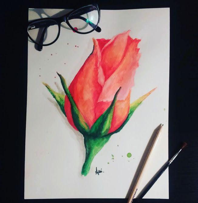 Róża Kwiaty Flower Rose Watercolor