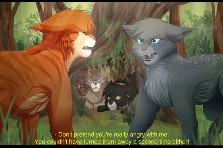 Fireheart finding out about Cinderpelt treating Little Cloud and White throat after Bluestar turned them away. Most of ShadowClan were dying from a mysterious sickness after eating rats and these 2 asked to be sheltered by ThunderClan