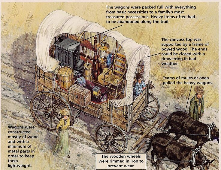 The wagons on the Oregon Trail were packed full of everything from basic necessities to a family's most treasured possessions.
