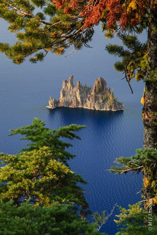 Crater Lake National Park, Pacific Crest Trail, Klamath, OR 97604 - Seven different trees live on Phantom Ship, an island in Crater Lake.  There are also colonies of violet green swallows, and several varieties of wildflowers and lichens living there.