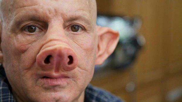 Cientistas estão criando híbridos de porcos/humanos em laboratórios e especialistas temem: ''Eles podem se transformar em monstros pensantes'' ~ Sempre Questione - Notícias alternativas, ufologia, ciência e mais