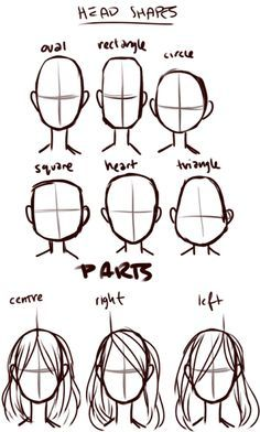 head shapes & parts  http://art-tutorials.tumblr.com/post/13925560333/lets-draw-hair