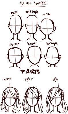 head shapes & parts  http://art-tutorials.tumblr.com/post/13925560333/lets-draw-hair