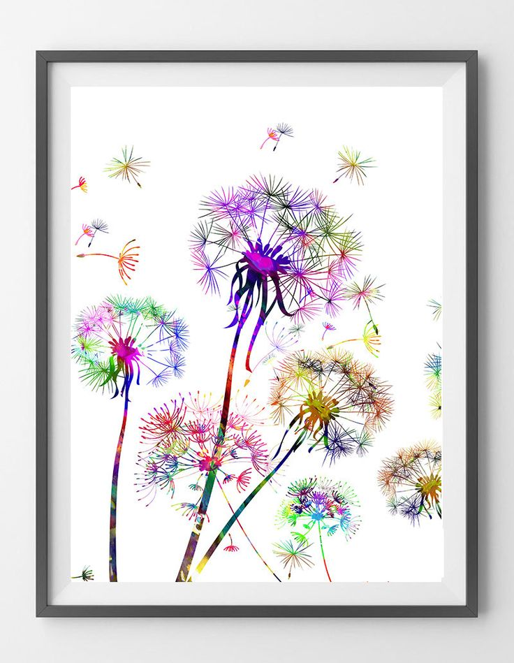 Dandelion 1 watercolor illustration