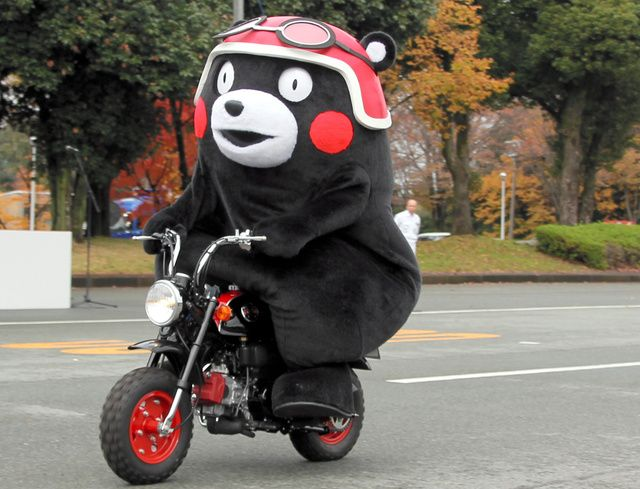 Driving Kumamon