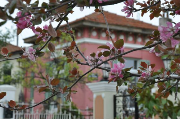 Συνοικία Ουζιέλ-Θεσσαλονίκη