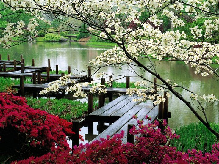 ландшафтный дизайн - стиль: китайский сад / landecor.by
