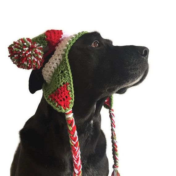 I N F O:  Unique, beautiful photography prop/ Holiday gift! Custom made in any colours you choose or as shown in pictures (red, white and green)  Hand crochet hat for your fur baby!  Fits medium-large breeds (labs, retrievers, shepherds, etc...)   ------------ C O L O R:  Our