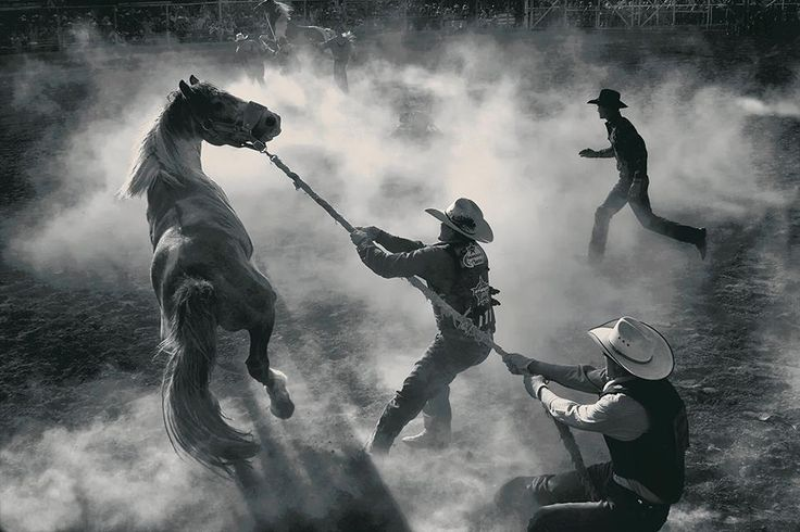 Annual Bucking Horse Sale in Miles City, Montana. Photograph by George Burgin for Smithsonian Photo Contest