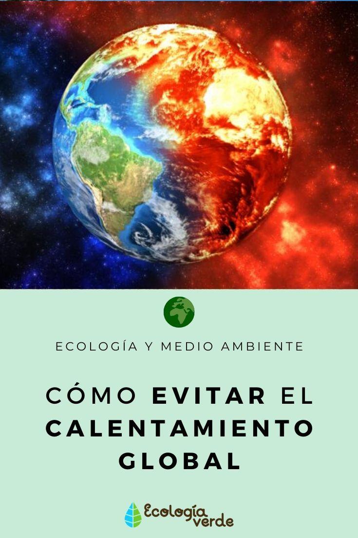 Cómo Evitar El Calentamiento Global Consejos Calentamiento Global Efectos Del Calentamiento Global Medio Ambiente