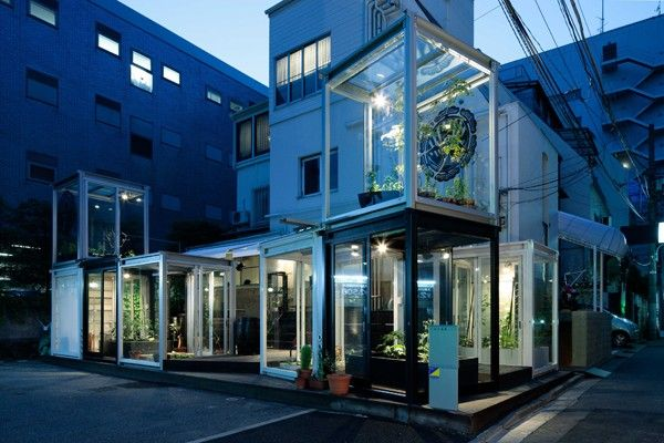 Roppongi Urban Farm, fattoria urbana al centro di Tokyo - Giappone #giardinidalmondo