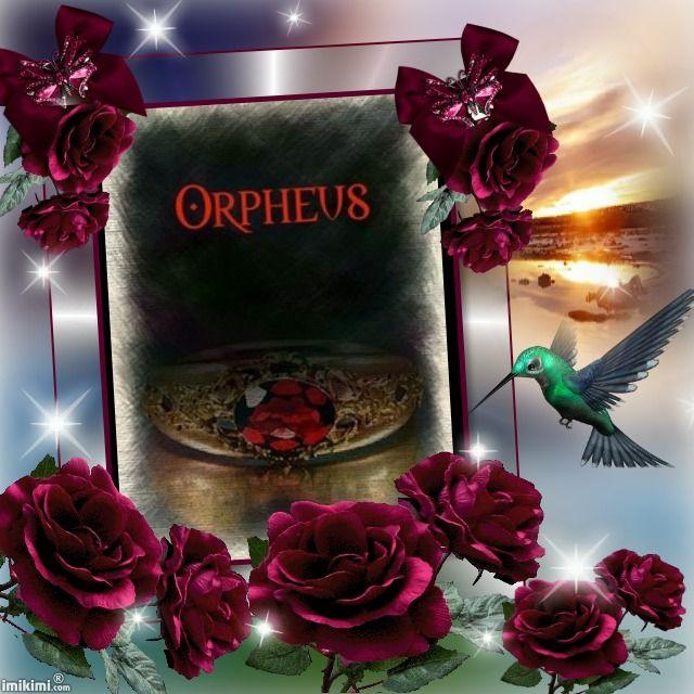 Orpheus di Diana Mistera