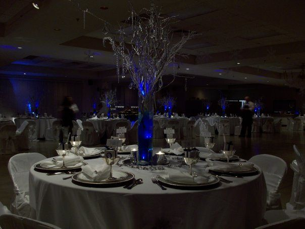 Royal Blue And Silver Wedding Reception Peacock Dream
