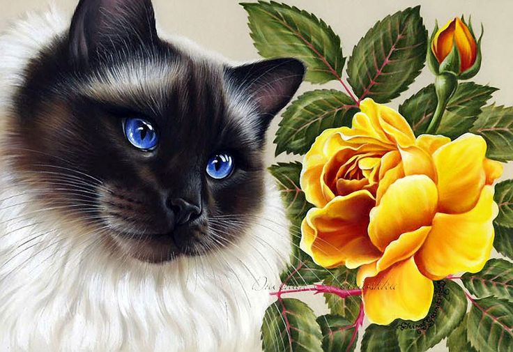 позволит реализовать открытки животные с цветами для детей гласит