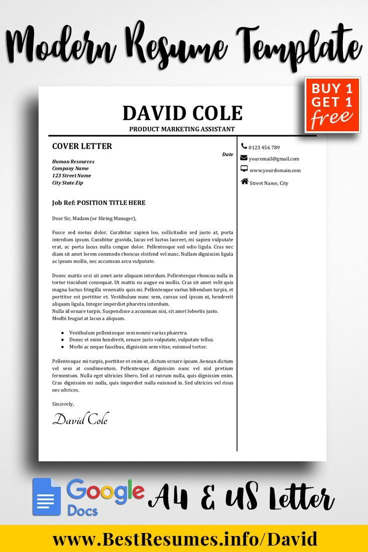 Professional Resume Template David Cole Resume Writing Examples