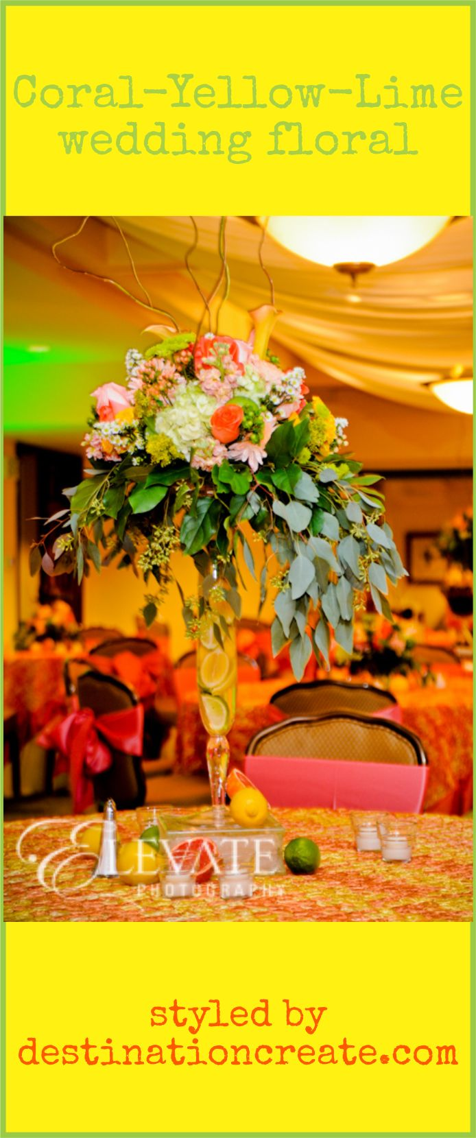 66 best ldscultural hall weddings images on pinterest wedding 66 best ldscultural hall weddings images on pinterest wedding reception ideas wedding decor and reception ideas junglespirit Images