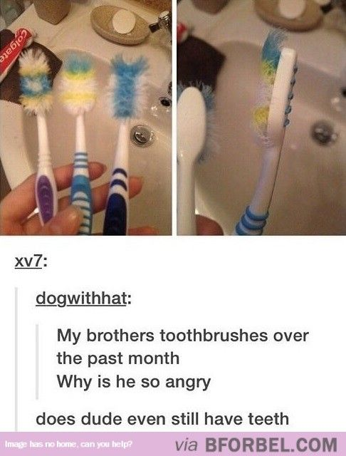 WHY AM I LAUGHING SO HARD