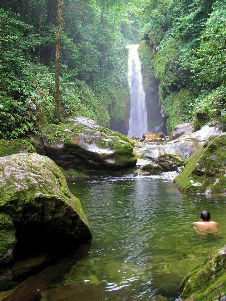 Pico Bonito National Park is a Tropical Cloud Forest, near #LaCeiba #Honduras #explore
