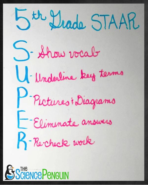 5th Grade Science Super STAAR Strategy