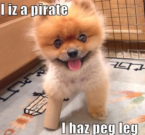 Arrrrr: Puppies Pictures, Happy Friday, Animal Pictures, Toilets Paper Rolls, Cutest Dogs, Pet, Funny Animal Quotes, Baby Puppies, Cute Dogs