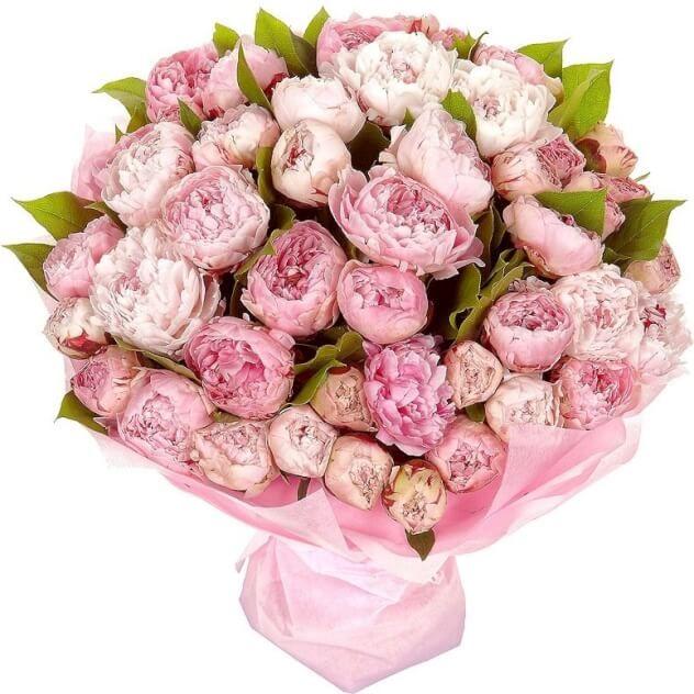 Розовые облака (51 шт.)