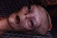 real aliens on earth proof - Google Search