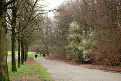 Walkway in Amsterdamse Bos