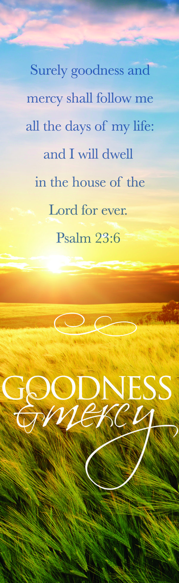 Psalm 23:6 Thank you lord for your loving kindness and your mercy.  I am not worthy but I am THANKFUL for YOUR LOVE!!!