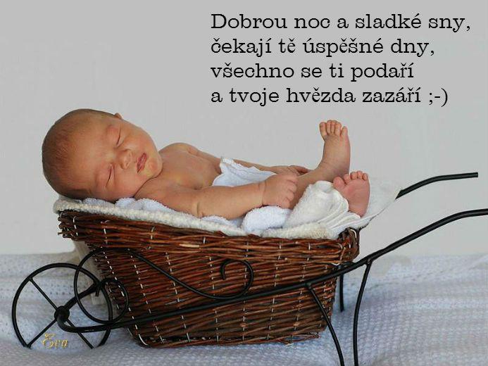 Dobrú noc a sladké sny, čakajú ťa úspešné dni, všetko sa ti podarí a tvoja hviezda zažiari :)