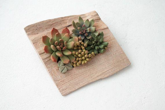 Verde suculento Decor Decoración marco de madera Base por EtenIren