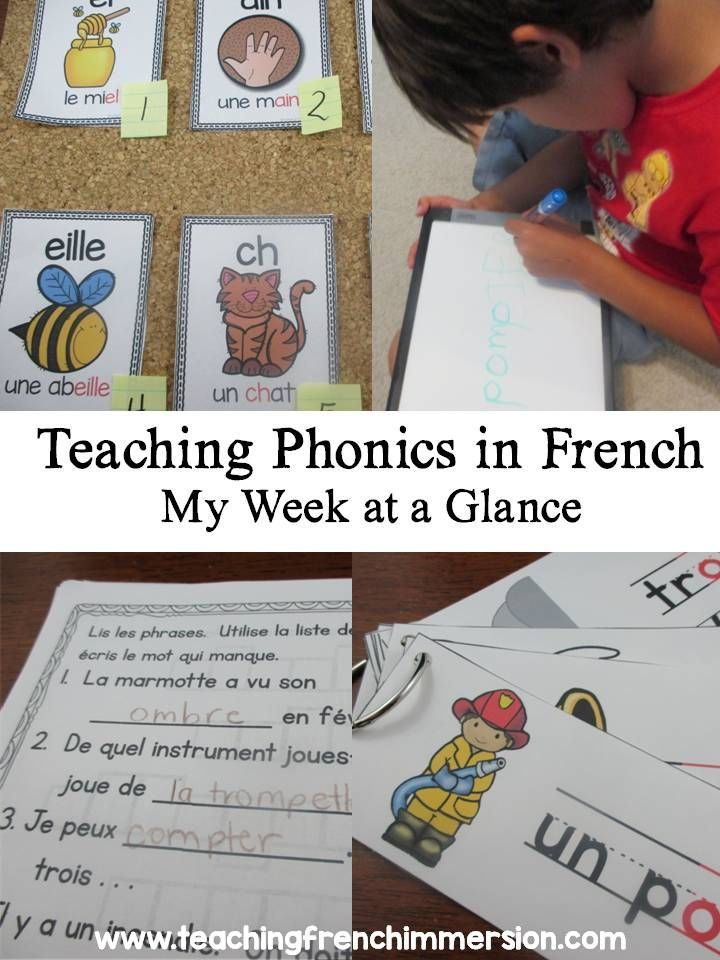 Great ideas in this blog post for teaching sounds in French!  Even includes a link to a freebie at the end.