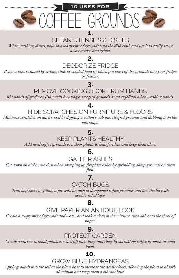 Great uses for an everyday kitchen item! 10 Genius Uses for Coffee Grounds | Blog | HGTV Canada