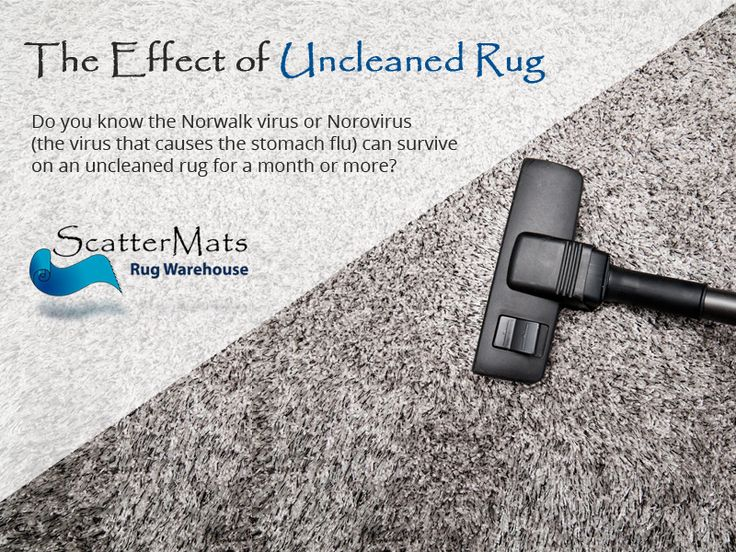 The Effect of Uncleaned Rug - Do you know the Norwalk virus or Norovirus (the virus that causes the stomach flu) can survive on an uncleaned rug for a month or more?